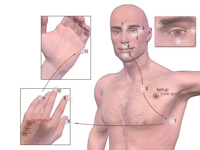 EFT tapping points. EFT uses the same meridians as acupuncture, but without needles.