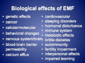 emf-effects-on-body