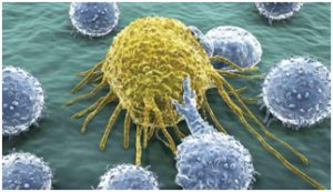 t-cells-attack-cancer