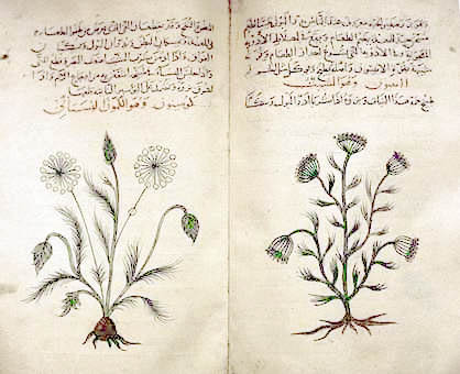Arabic_herbal_medicine_guidebook